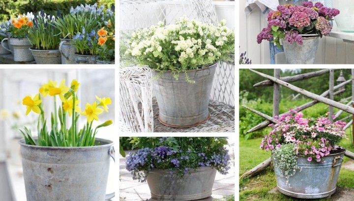 How to create amazing DIY outdoor decorations from old buckets: 22 great ideas for inspiration