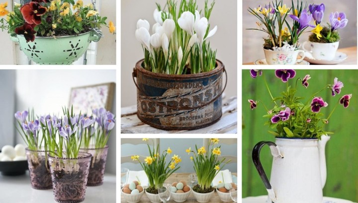 Turn old kitchen utensils into beautiful decorations for spring: 22 Simple and inexpensive ideas