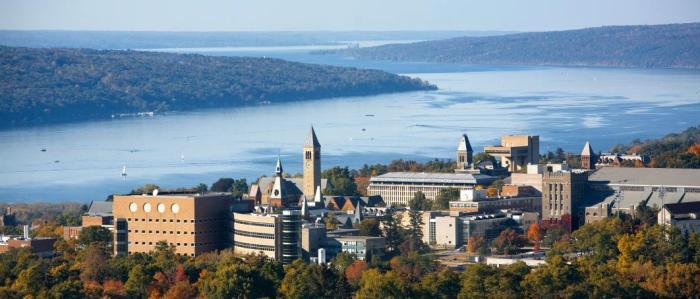 Home_Cornell