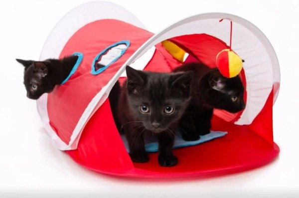 HARTZ Just For Cats Tunal Peek And Play