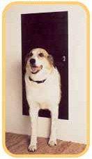 solodoor automatic doggie door