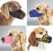Dog Muzzles for Aggressive Dogs