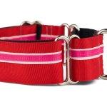 Striped Best Martingale Dog Collar