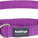 Red Dingo Plain Purple Martingale Dog Collars
