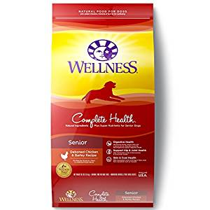 best senior dog food WELLNESS HEALTH
