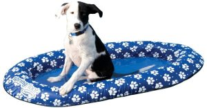 PuddlePaws best pool Floats for Dogs