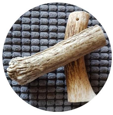 bois de cerf1