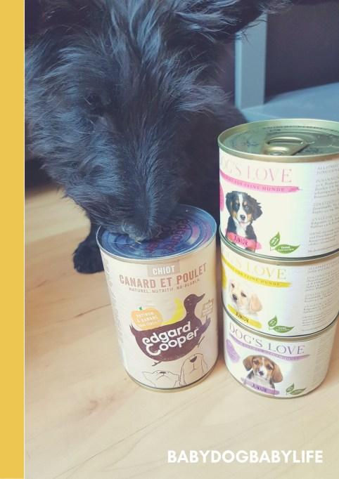 L'alimentation de babydog (1)