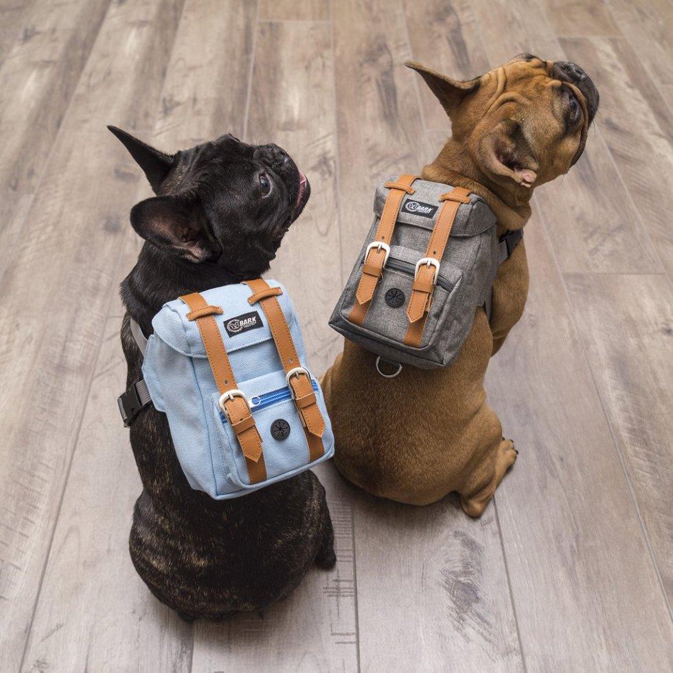 dogpacksweb_1024x1024.jpg