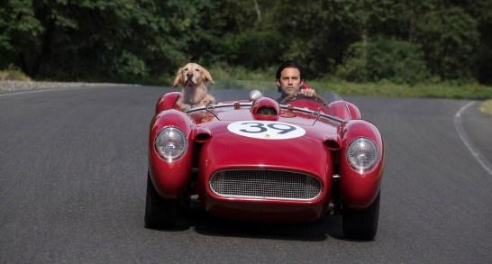 """L-R: """"Enzo"""" and Milo Ventimiglia in Twentieth Century Fox's, THE ART OF RACING IN THE RAIN"""