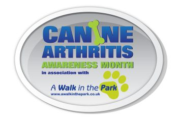 Canine Arthritis Awareness Month in association with A Walk In The Park scaled How To Help Young Dogs Avoid Arthritis