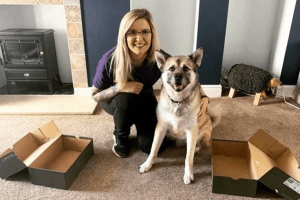 Entertain your dog at home