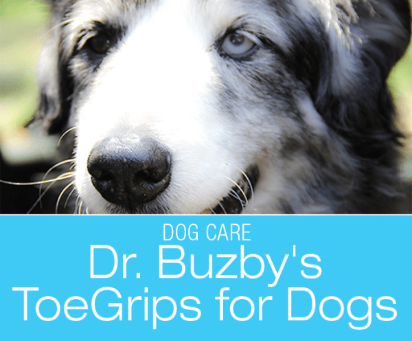 Dr. Buzbys ToeGrips for Dogs: New Solution To An Old Problem for Dogs With Mobility Issues