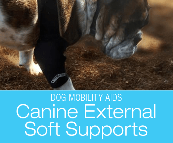 Canine Rehabilitation Support Devices: Soft Supports and Wraps