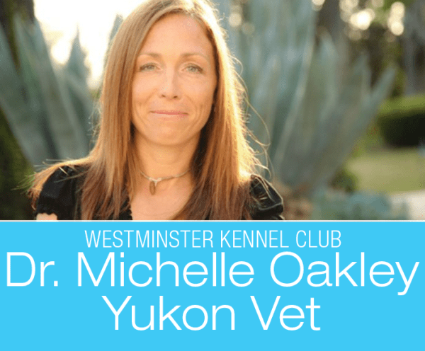 Dr. Michelle Oakley: Yukon Vet Tackles Westminster with Ease and Grace