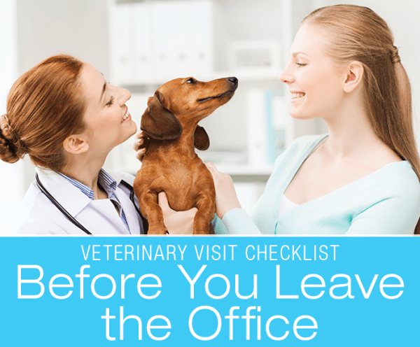 Veterinary Doorknob Questions: Before You Leave the Office. Are there things you forgot to ask?