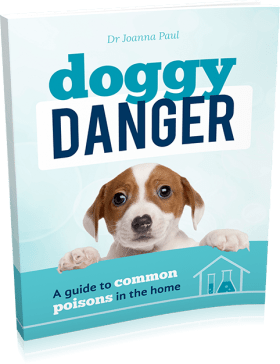 Doggy Danger: A Guide to Common Poisons in the Home