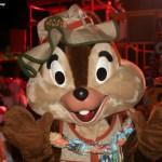 Animal Kingdom Block Party — 24 Days Til Disney!