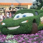 Middle of Winter? Let's think about the Flower and Garden Festival!