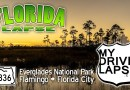 Everglades National Park: A Dashcam Drive from Flamingo to Florida City