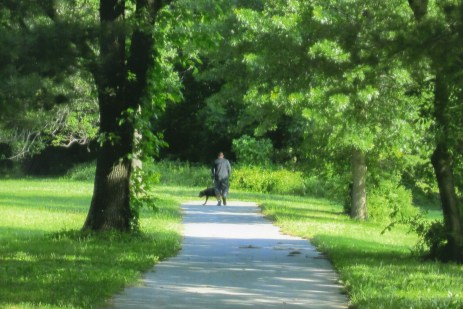 A man takes his dog for the daily walk.