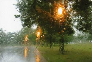 Rain brings on the street lights