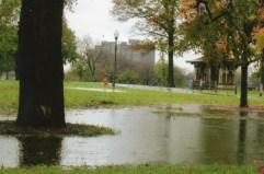 A temporary pond