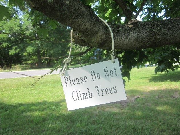 Please Do Not Climb Trees