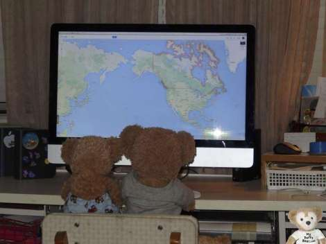 Duffy the Disney Bear googles map of Canada