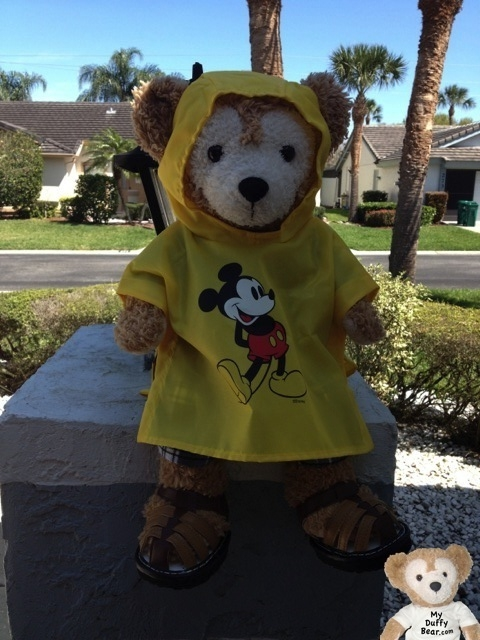 Duffy the Disney Bear wearing Rain Poncho