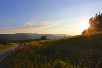 Natur Landschaft