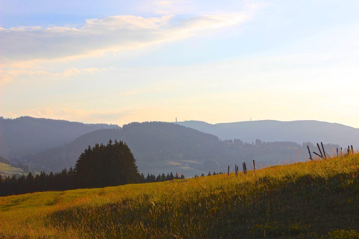 segway_tour_schwarzwald_zweiseen_IMG_0766