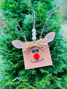 Reindeer DIY – How to Create a Fun Square Head Rudolph!