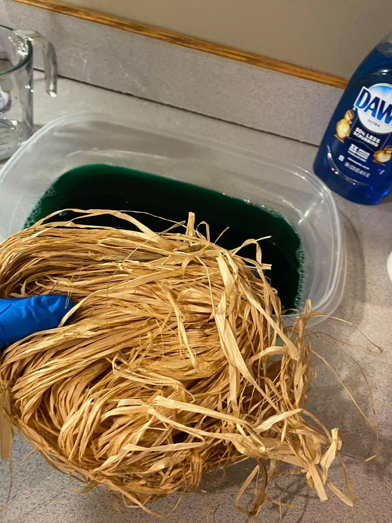 adding raffia to colored water
