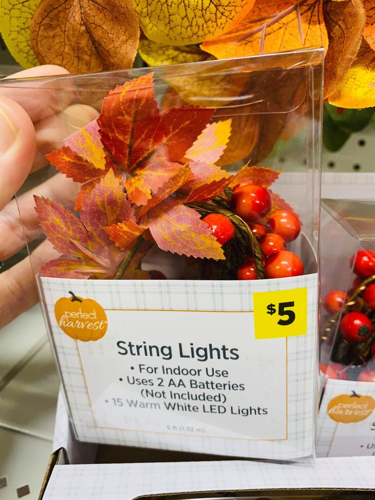 fall string lights from the Dollar General