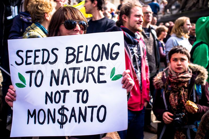 1369513848-thousands-march-against-monsanto-in-brussels_2086636