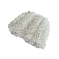 Biodegradable Scourer