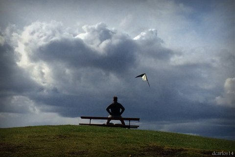 Bret Streeter of Edmonds enjoys seeing a kite fly at  Marina Beach Sunday.