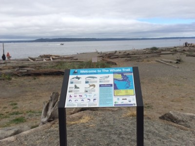 The Whale Trail sign at Marina Beach Park in Edmonds.