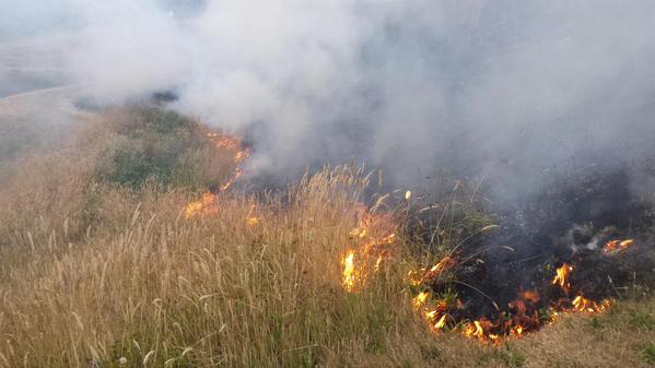 The brush fire at Meadowdale High School Thursday. (Photo courtesy of Lynnwood Fire Department)