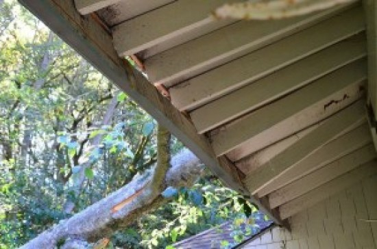 Damage to the building included the gutters, downspouts, fascia boards, rafters and shingles.