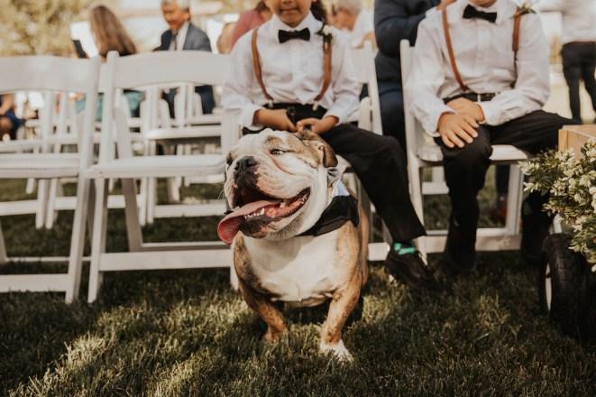 the-farm-wedding-california-38