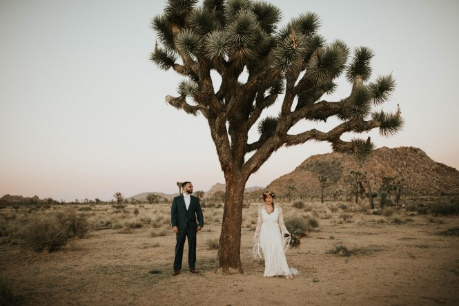 Joshua Tree Elopement-68