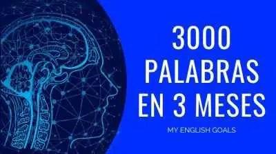 Curso vocabulario: 3000 palabras en 3 meses