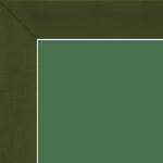 790-lichen-binding