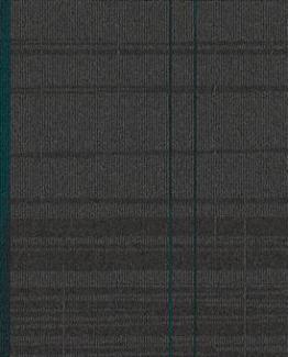 50208 Azores