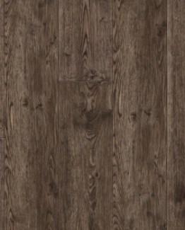 VV035-00917 Moran Oak