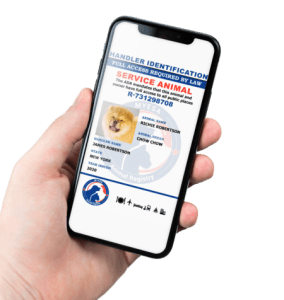Digital Handler ID
