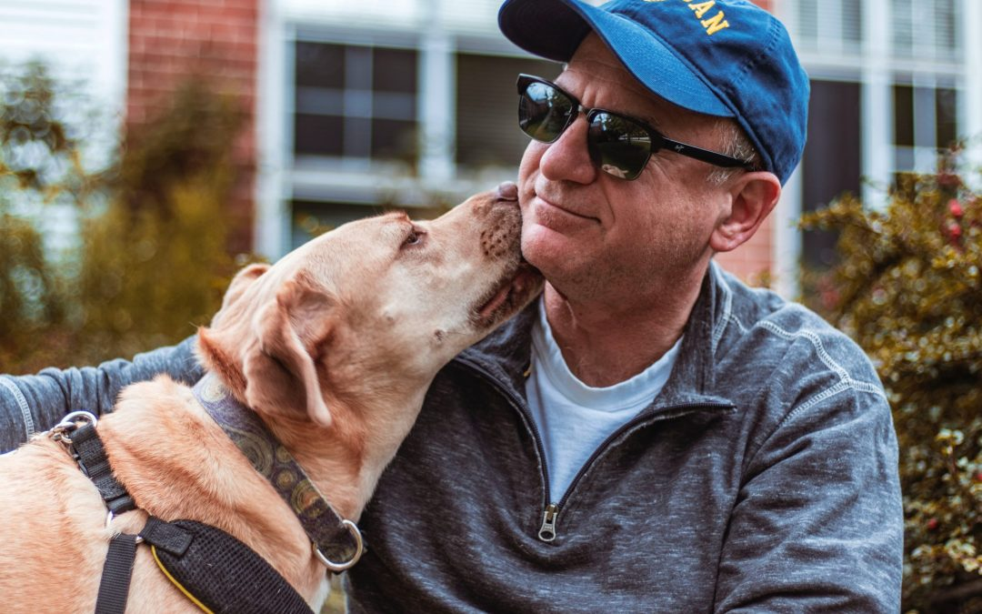 Alzheimer's, Assisted Animal Therapy, and Artificial Intelligence