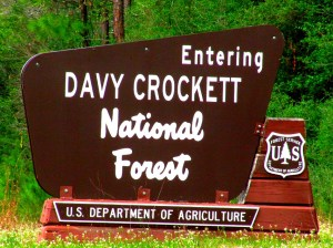 Davy CKT Natl Forest